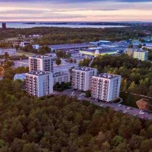 Так будет выглядеть новый район. Автор фото: Hepsor OÜ