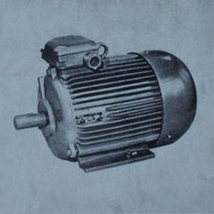 """Такие моторы выпускал завод """"Вольта"""" еще каких-то лет сорок назад."""
